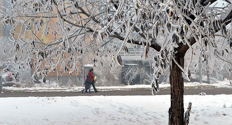 Ardahan'da hava sıcaklığı sıfırın altında 22 derece