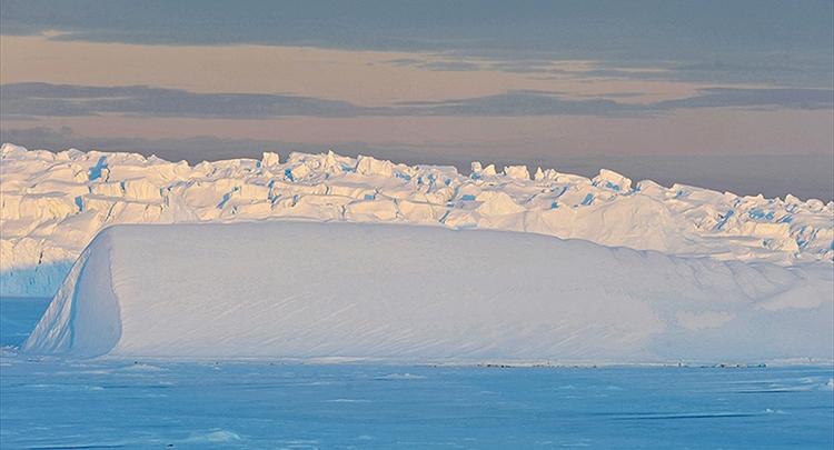 BM: Antarktika'da sıcaklık 19,8 dereceye kadar çıkıyor