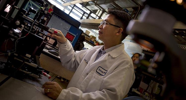 Bilim adamları 3D yazıcıyla işlevsel damar ağı oluşturdu