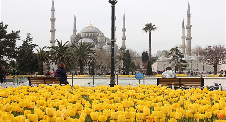 İstanbul'da Lale Zamanı