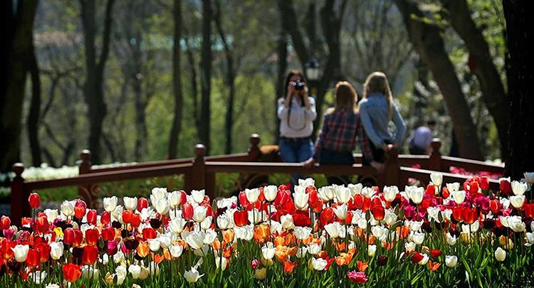 Sonbaharda sıcaklıklar mevsim normallerinin üzerinde olacak