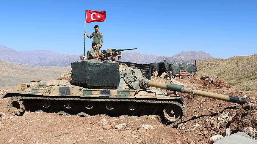 Mehmetçik Herekol Dağı'nda kuş uçurtmuyor