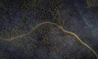 Bakan Pakdemirli: Tarihi Gelibolu Yarımadası'ndaki orman yangını kontrol altına alındı