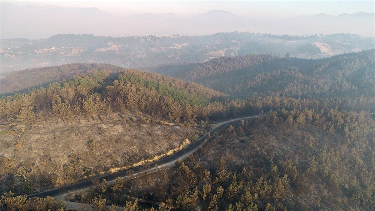 Bakan Pakdemirli: Adana Kozan'daki orman yangını kontrol altına alındı