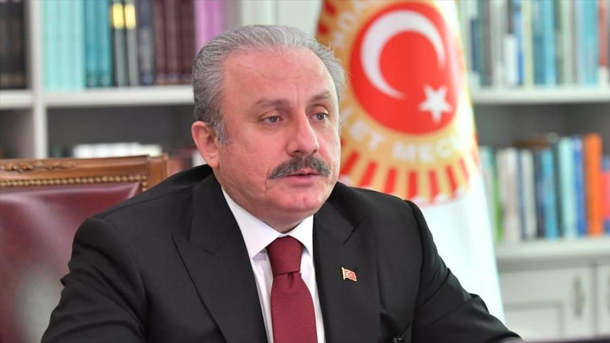 TBMM Başkanı Şentop, Cumhurbaşkanı Erdoğan'a yönelik bazı İranlı yetkililerin kullandığı yakışıksız tutumu kınadı
