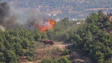 Hatay'daki orman yangınlarıyla ilgili tutuklu 2 kişiye dava açıldı