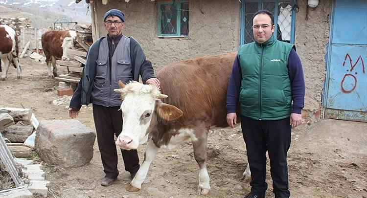Türk bilim adamının mikroçipi 'Sarıkız'ı kurtardı
