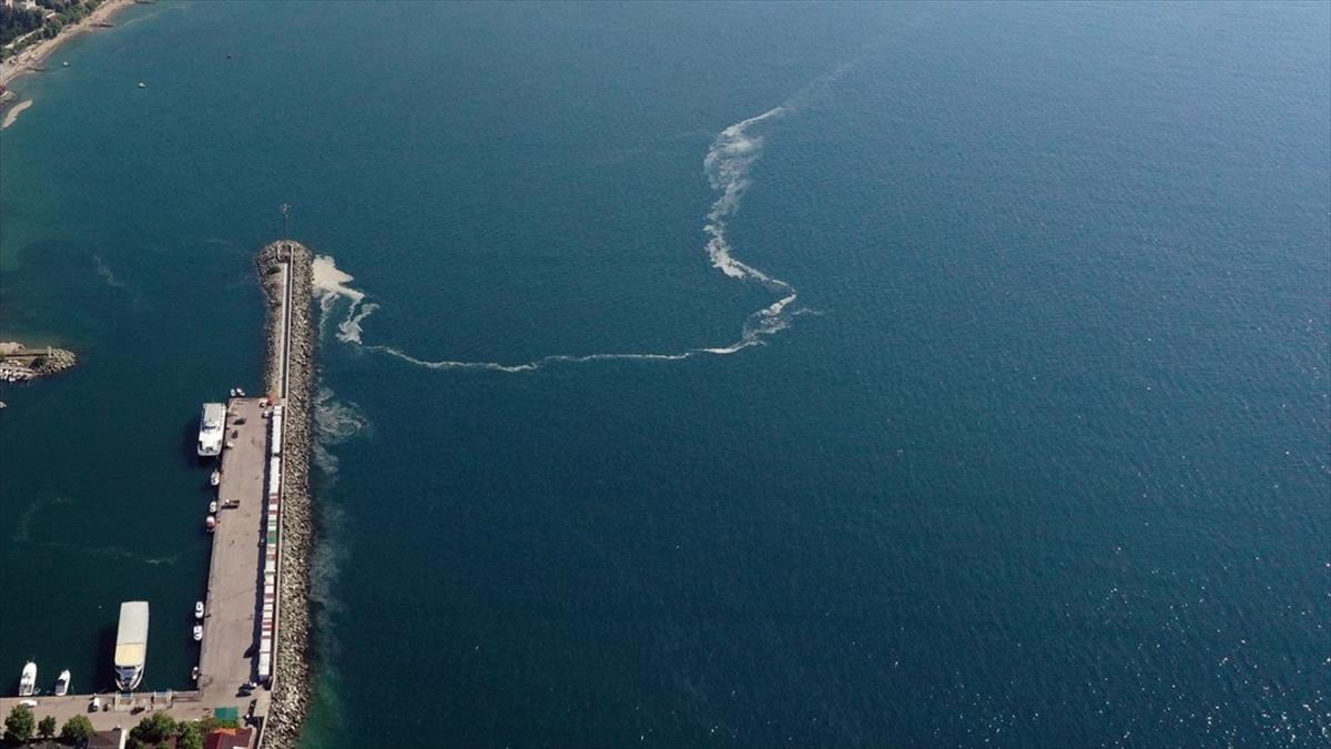 Marmara Denizi'nde toplanacak miktarda müsilaj olmadığı için dün de temizleme çalışması yapılmadı