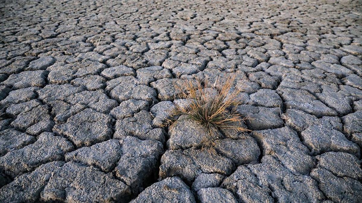 İklim değişikliğiyle mücadelenin en büyük paydaşı gençler ve kadınlar olacak